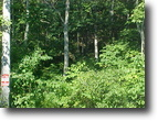 49 +/- Wooded acres Elliott Co. KY