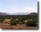 Arizona Farm Land 30 Acres 30ac. Well/Pwr & Rd Frontage - Financing -