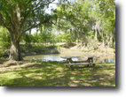 Florida Ranch Land 250 Acres Rock Ridge Ranch and Home