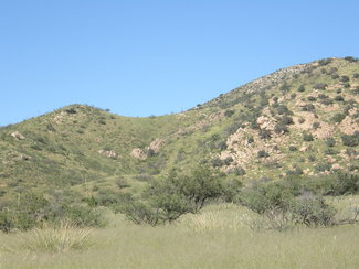 Looking east at the Dragoon Mountains in the Coronado National Forest.