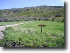 Colorado land/acreage 5 acres adjoining NF