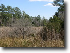 Carolina Shores Acreage & Water Access