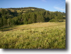 Montana Ranch Land 320 Acres Mountain Ranch