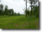 Tennessee Farm Land 11 Acres Gated Secluded Development Near Knoxville