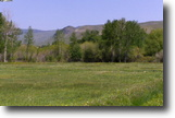 Salmon Idaho- 21 acres Lemhi Riverfront