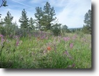 3-5 Acre Homesites in Douglas County, CO