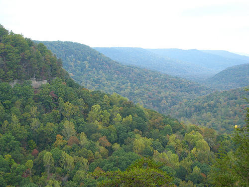 land at fall creek reserve property spencer tennessee