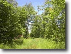 Michigan Hunting Land 20 Acres TBD Ford Farm Road (W) MLS #1047531