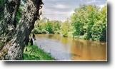 Michigan Hunting Land 38 Acres TBD Off Pike Lake Road  MLS #1044417