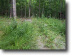 Michigan Hunting Land 11 Acres 54 Brown Road  MLS #1047621
