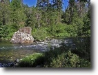 40 Acres On The Sacramento River Flywaters