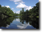 Florida Hunting Land 2 Acres Deep Creek Plantation