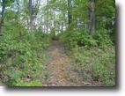 Tennessee Land 2 Acres 1.5 ac Mayfield Brown Road