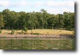 Wisconsin Land 1 Acres Lake lot was $500K, Make Offer!