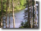Michigan Waterfront 94 Acres Lot 43C Fence Lake Rd.  MLS #1010447