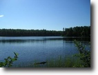 Michigan Waterfront 96 Acres Lot 45A Fence Lake Rd  MLS #1093429