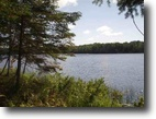 Michigan Waterfront 5 Acres Lot 26 Fence Lake Road  MSL #1010431