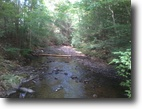 75 wooded acres w/ Stocked Trout Stream
