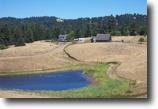 California Ranch Land 40 Acres Clow Ridge Beauty, Anderson Valley