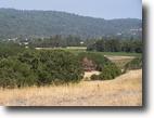 California Farm Land 20 Acres Anderson Creek Homestead - Anderson Valley
