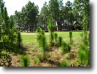 North Carolina Land 1 Acres Ready to Build Golf Front Lot