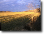 40 acres for sale in Central Wisconsin