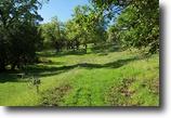 California Ranch Land 60 Acres Buck Mountin Ranch 60 Ac., Cloverdale CA