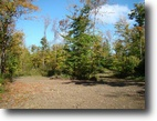 New York Farm Land 13 Acres Deer Hunting, Cabin sites new Driveway !