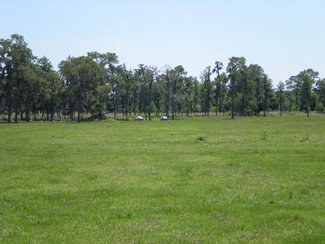 60 of the 100 acres are improved pasture
