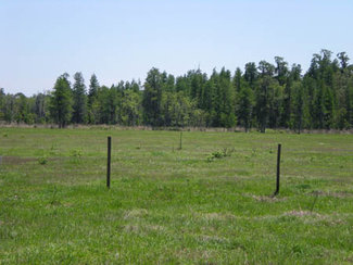 Barbed wire perimeter and cross-fencing