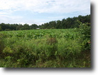 Tennessee Ranch Land 628 Acres 627.50 AC West of McCormick Ridge Road
