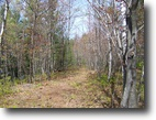 Wisconsin Land 2 Acres Wooded Northwoods Retreat