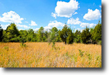 Oklahoma Farm Land 8 Acres Saddlebrook R