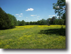 Tennessee Farm Land 87 Acres 481 Computer Lane (87 ac)