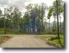 Tennessee Land 1 Acres Invest now Owner will finance this land