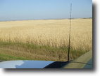 Saskatchewan Farm Land 320 Acres Saskatchewan Farmland For Sale ***SOLD***