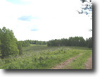 Tennessee Farm Land 750 Acres McCormick Ridge Road (750 ac)
