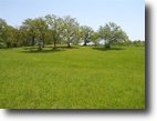 80 Acres in Starkville, MS