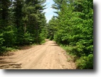New York Farm Land 5 Acres Adirondack Land / State Forest next door