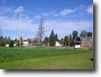 Michigan Land 1 Acres 13660 Huron Street  MLS #1083084