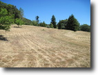 Dyer Ranch - 187 Acres - Yorkville CA.