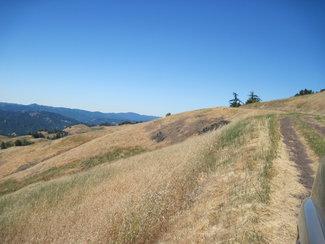 westerly facing meadows.