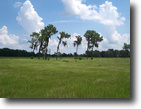 Florida Ranch Land 349 Acres Myakka City Ran