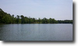 South Carolina Waterfront 1 Acres Luxurious Lakefront Homesite $94,900