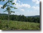 Arkansas Farm Land 38 Acres 38 Ac, Mountain View, $77,000