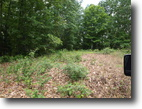 21.75 Acre Wes Dailey Rd.