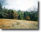 4.24 Acres Dover AR Linker Mountain