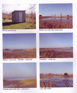 Pump House and water-controlled marsh