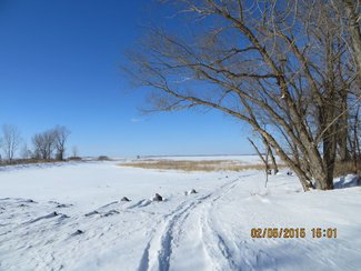 Winter Lake Shore