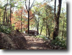 33.5+/-acres with cabin MLS 101125